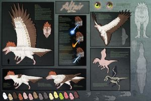 Altair Reference Sheet 2012 by AltairSky