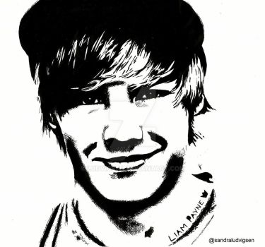 Liam Payne One Direction by ludvigsen