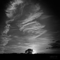 SUBART-LANDSCHAFT-INFRARED-055 by subart59