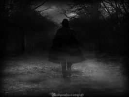 The loneliness of vampyr by CountessBloody