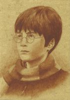 Harry Potter First Year by Diarmaida