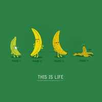 This Is Life by NaBHaN