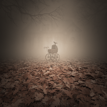 Lost in the mist by Alshain4