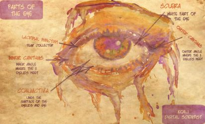 Most Unfamiliar Part of the Eye by koilj