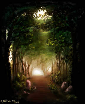 Forest Path by merrak