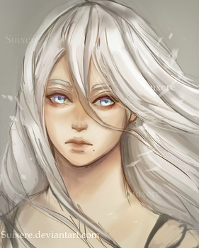 A2 by Suixere