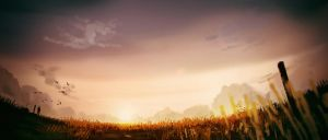 Field of Gold by MartinBailly