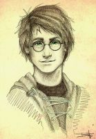 Harry Potter by Iwanttodriveazamboni