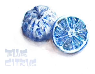 Blue citrus by AbstractSun