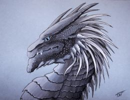 Dragon sketch by Drakonessa-Tsi