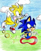 Sonic 'n' Tails by Lexi-The-Fox
