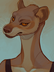 Fossa by LiLaiRa