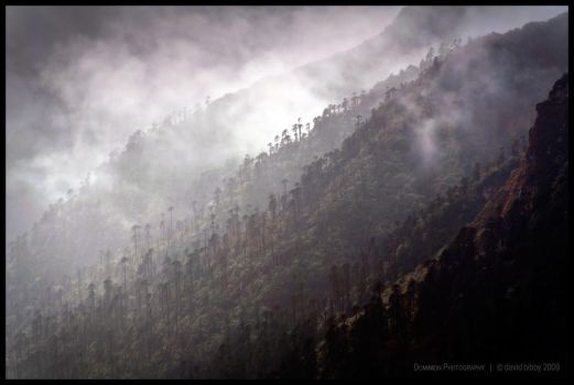 Misty Mountains II by Dominion-Photography