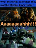 The turtles 2012 and TMNT movie of Michael Bay by Crystal-Violeta
