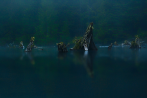 Snag Lake 6 by Alegion-stock