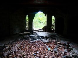 Ruins of the Enchanted Forest by nathanielwilliam