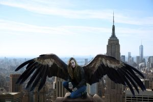 Maximum Ride Takes New York by IAmEmilyK
