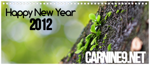 Happy New Year 2012 by carnine9