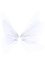 White Wing png by mysticmorning