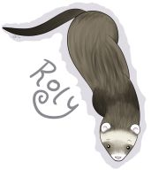 Roly Ferret by pdutogepi