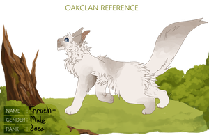 OakClan: Thrushpaw by nargled