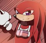 Sonic Riders - Knuckles by fire555angel