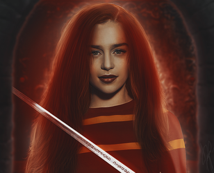 Gryffindor by EnterDiamond