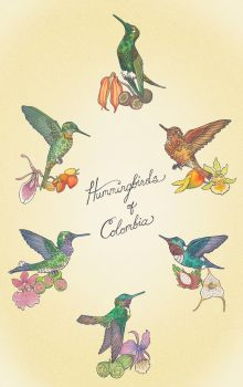 Hummingbirds of Colombia by LisaBueno
