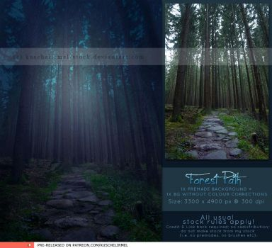 Forest Path Premade by kuschelirmel-stock