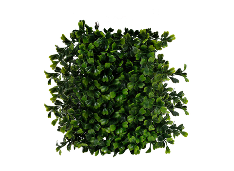 Png Plant by Moonglowlilly
