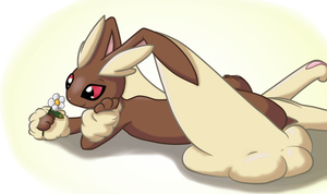 Lopunny Daydreaming by Pokettkinz