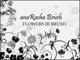 Flowers 3 brush by anaRasha-stock