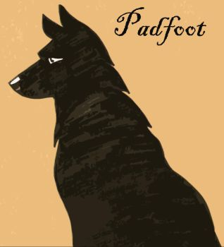 Patient Padfoot by HPID