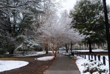 Snowy Statehouse Grounds 2010 by CliftonFomby