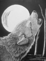 Crying Wolf by Hexabeast