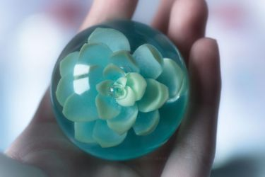 Succulent resin paperweight by Crystarbor