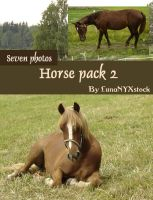 Horse pack - 02 by LunaNYXstock