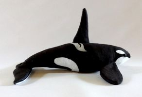 Orca Plushie - North Pacific Resident by KtrenalWinterheart