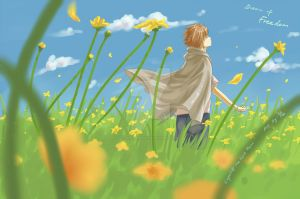 Capell-The first hero-Dream of Freedom by Gin-Uzumaki