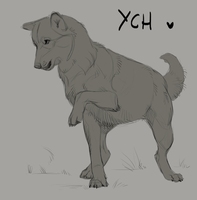 PRICE DROPPED [CLOSED] Playful wolf YCH by MuseTorment