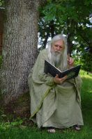 Reading Wizard 2013-06-17 05 by skydancer-stock