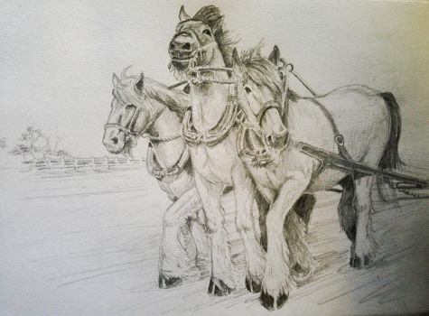 Three Draft Horses by Ruckrova