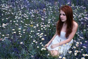 Field of Flowers by SleepingAwakePhoto