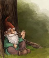 Gnome by Felix-Vulpes