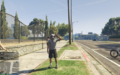 GTA Online: I take this game very seriously! by RustyRaccoon