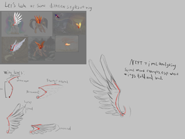 Wings study part 2 by DarkFlame75