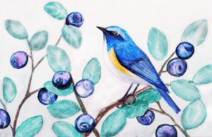 Blueberry and Bluetail by Olya19