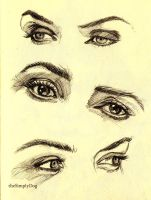 Eyes of Kate Winslet by thesimplyLexi