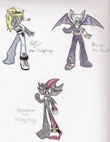 Sonic Riders: Team Shadow by ShadOBabe