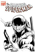 SnakeEyes vs Spider-Man by RobertAtkins